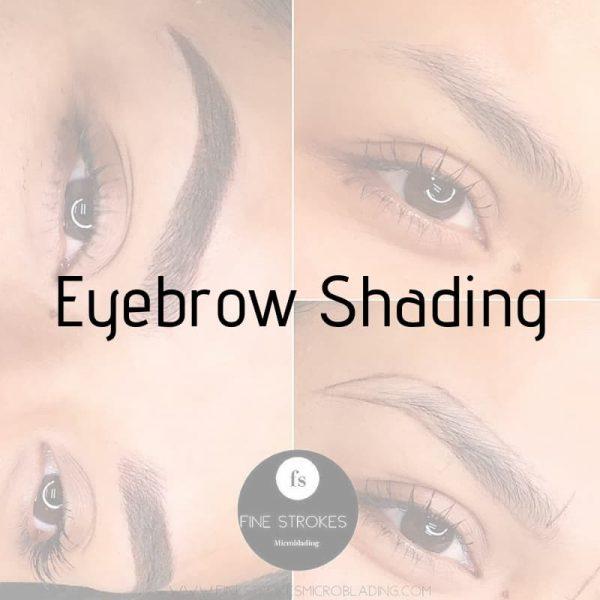 eyebrow shading training michigan